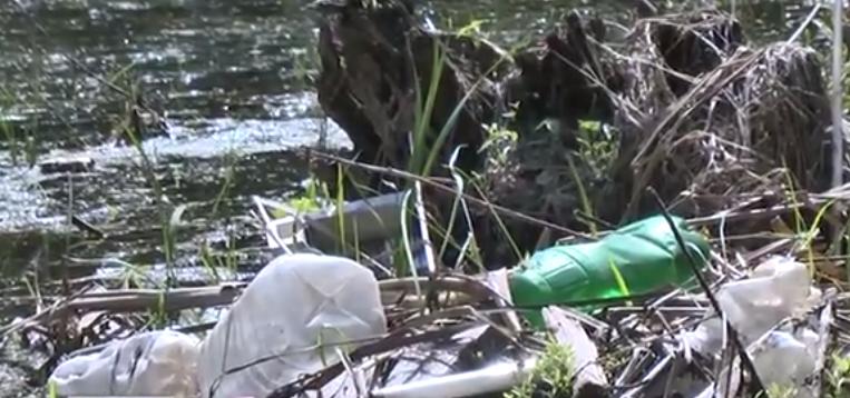 Своими руками. Одни очищают берега реки от мусора, другие его завозят — ОРТ