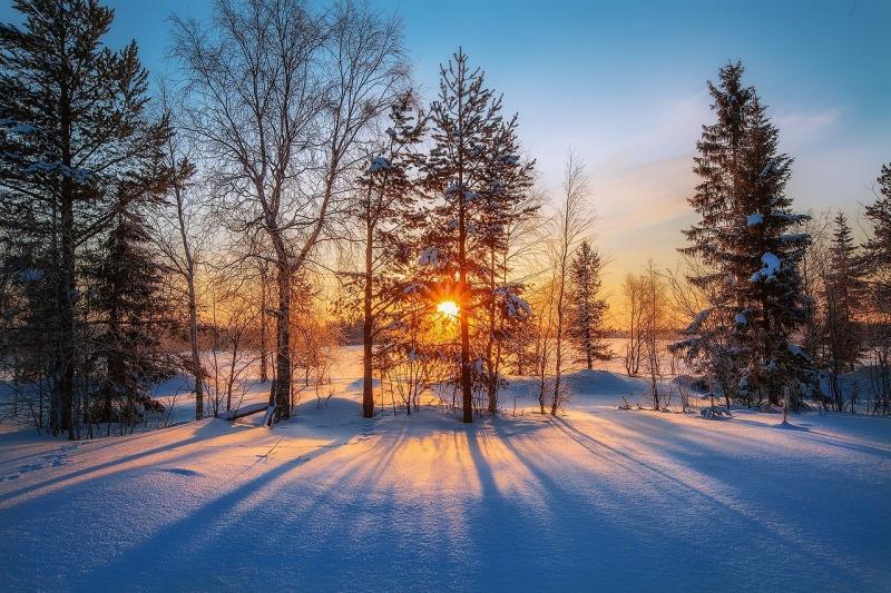 Зима пока не злится. Прогноз оренбургской погоды на 03.12.18 г.