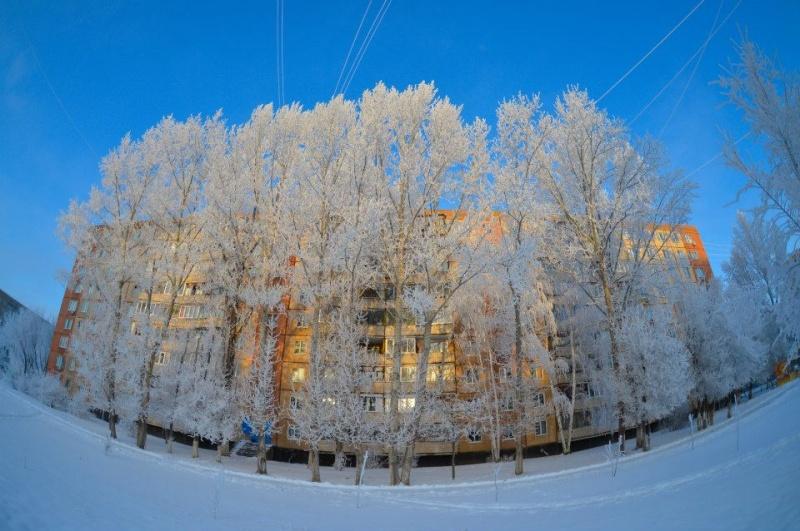 Фото дня: зима в Оренбурге