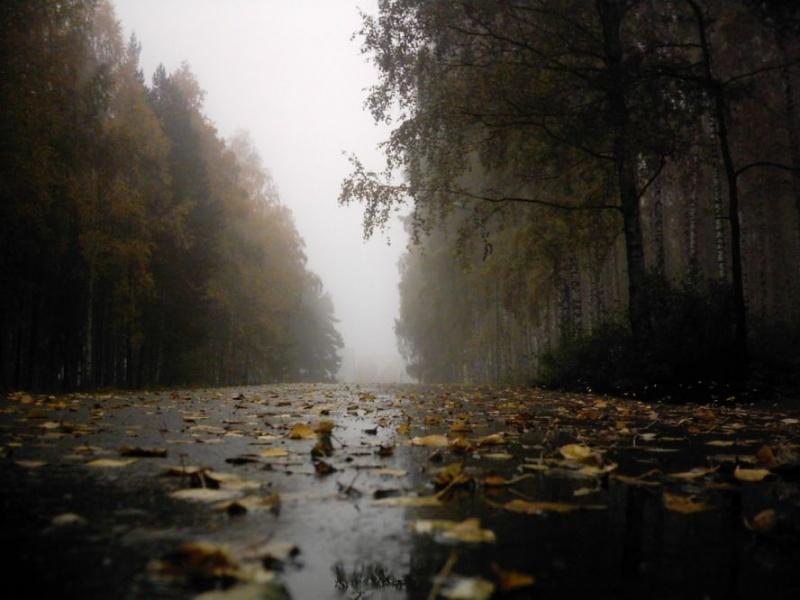 Осенний хмурый день. Погода в Оренбурге на 20 октября