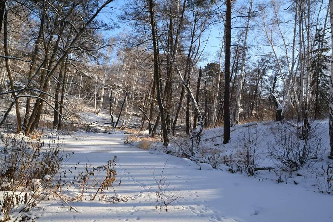 Диалог с рекой. Губерля в зимней фотоподборке от Ольги Шейдт
